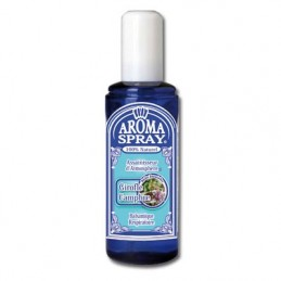 Aromaspray N° 2 Girofle-Camphre - 100ml